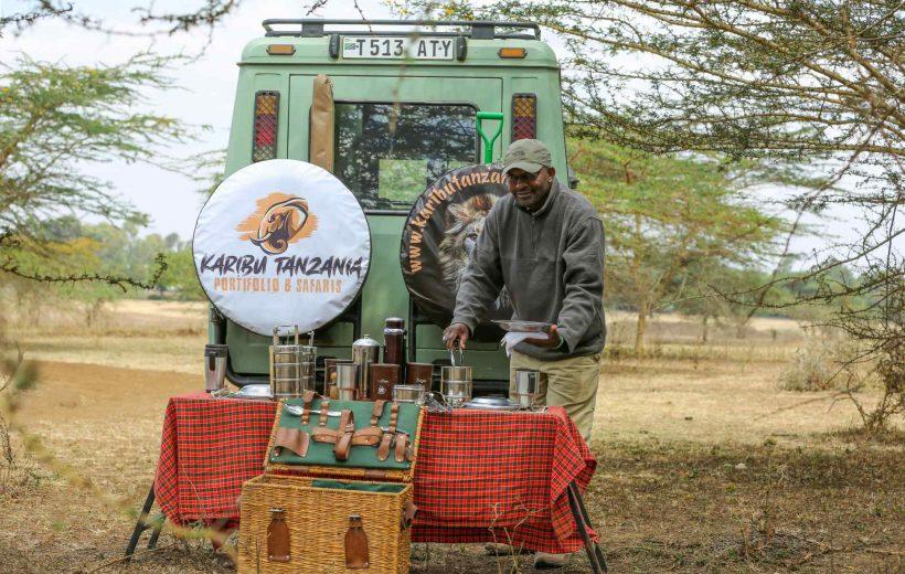 4 Day Safari Adventure